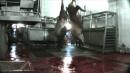 Hoisting Bulls Alive