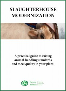 slaughterhouse-modernisation-guide-cover